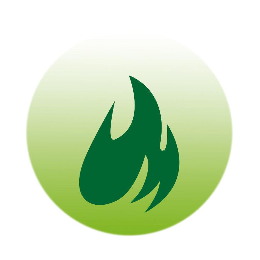 logo_flame.jpg