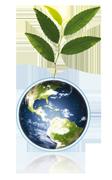 logo_plant.png